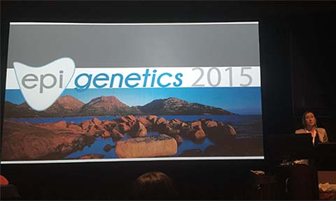 Highlights of Epigenetics 2015
